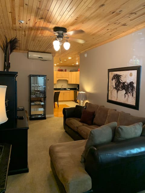 Charming Apartment in Downtown WIlliamsport