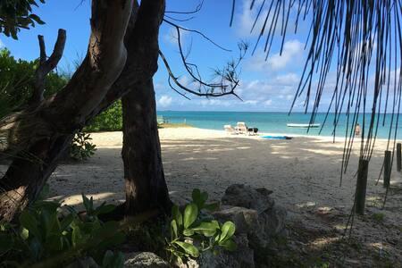 Tropical  Coconut Bungalow