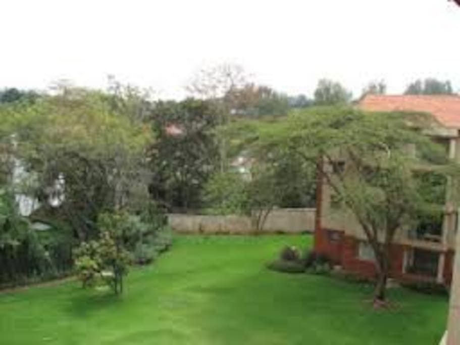 Property green areas