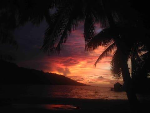 Tropische ervaring voor 3 dagen 2 nachten in Togean