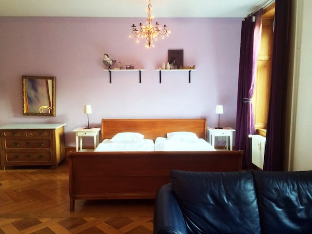 Guesthouse Basel, Sonnenapartment - Basel - Apartment