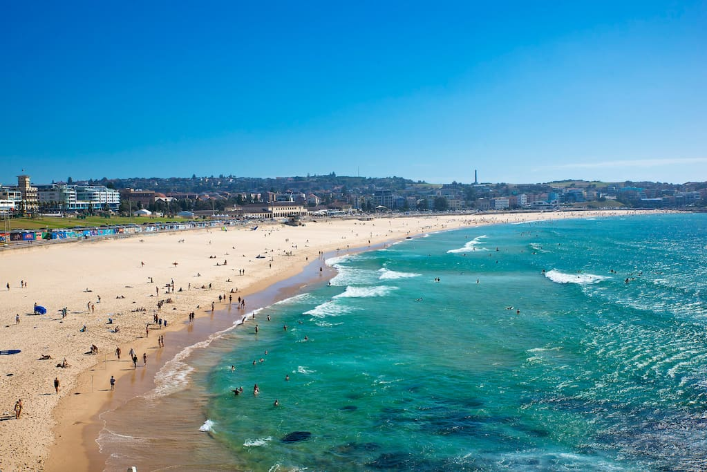 Bondi Beach (Actual View from balcony)