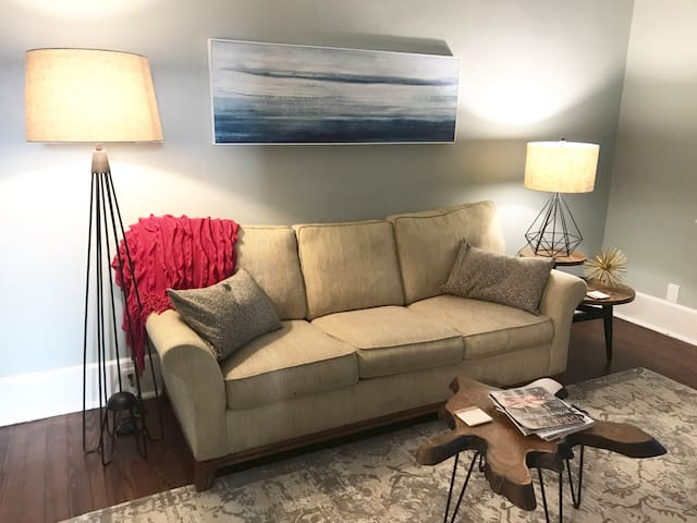 Living area with pull out sofa