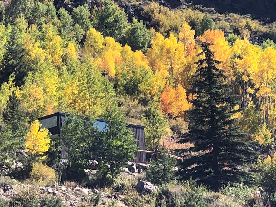 Tiny home in Fall