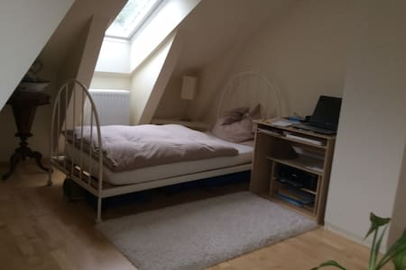 Room in roof top flat - Salzburgo