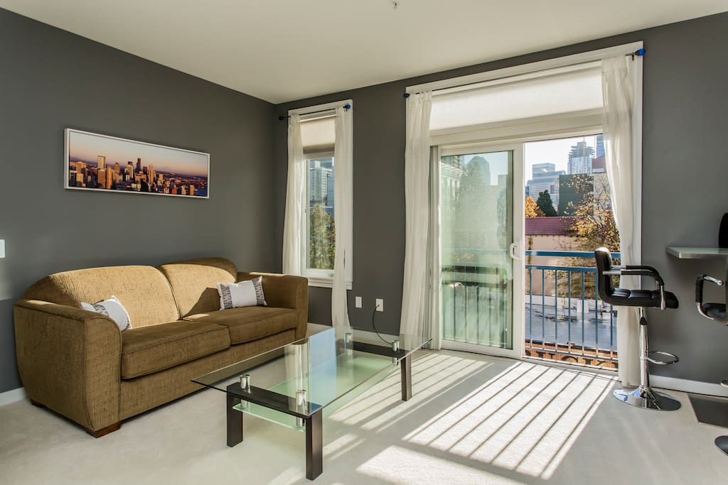 Pull-out sofa, lots of natural light and an amazing city view!