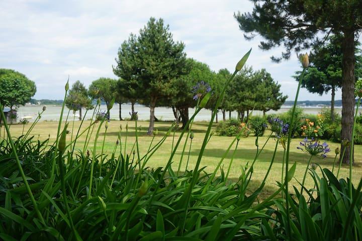 "chambre vue directe golfe du Morbihan ""Ile Renaud"" - Locmariaquer - Huis"