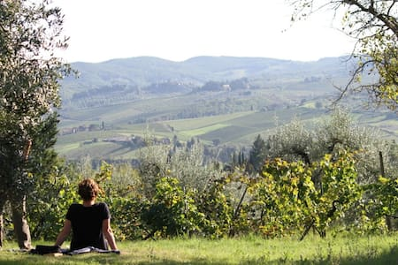 Relax, Art and Nature in Chianti 3 PERS - Greve In Chianti