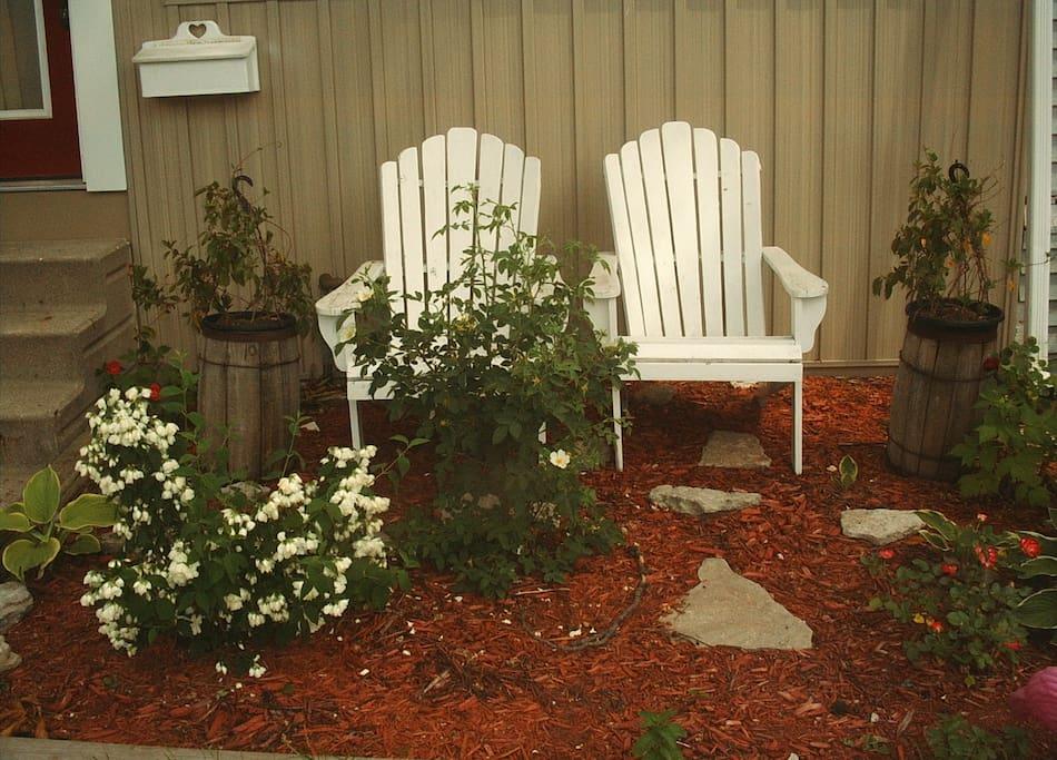 Detail of the front yard garden with mock orange bush.