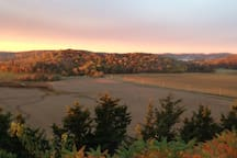 Fall view.