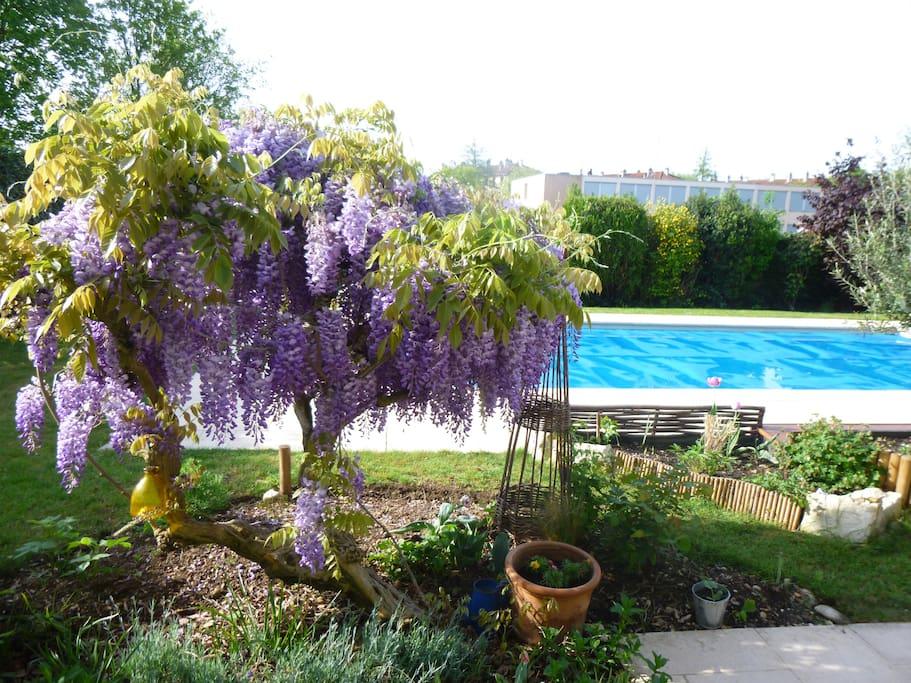 Villa avec piscine pres du centre villas louer bourg for Piscine de bourg en bresse
