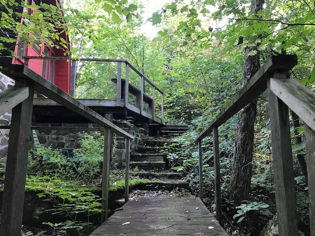 Petit chalet de pierres en forêt - L'Appalaches