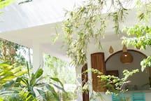 Bamboo on ground floor