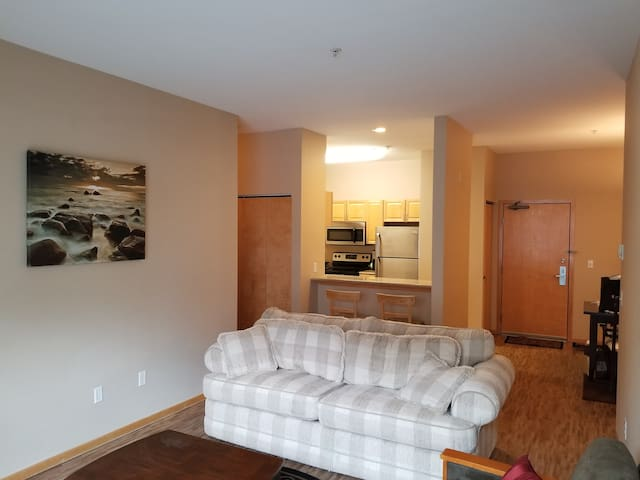 Spectacular 2BR/2BA Apartment in Minneapolis