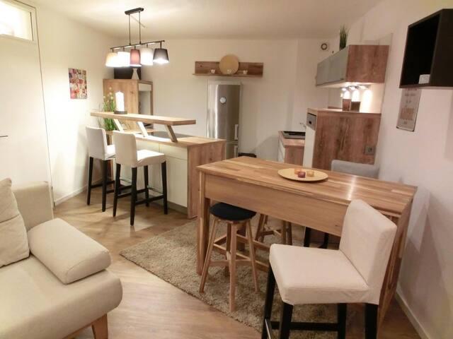 Appartement direkt am Skilift - Hallenbad+Sauna