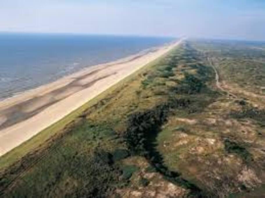 kust en duinen