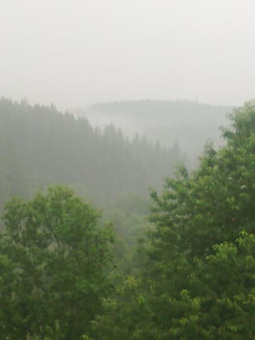 Another view from the room at spring mist.