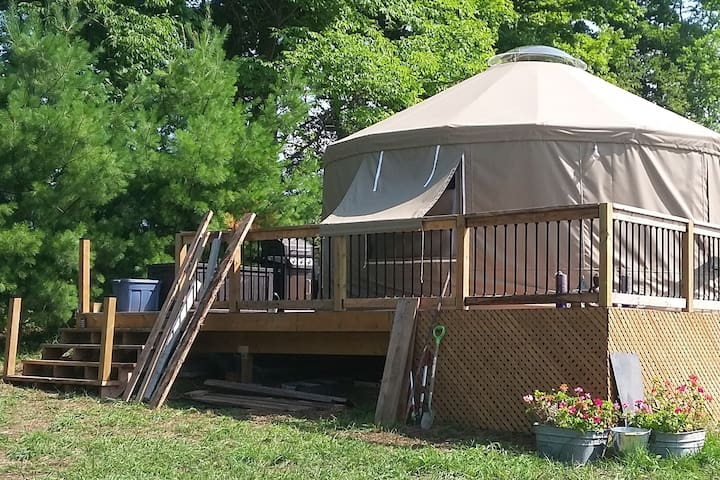 The Yurt in the Hollow