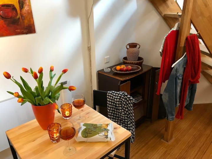 Nice cosy apartment (32m2) in Nijmegen-centre