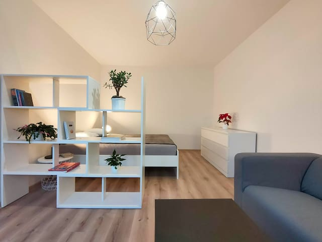 COSY BRIGHT APARTMENT close to city down-town