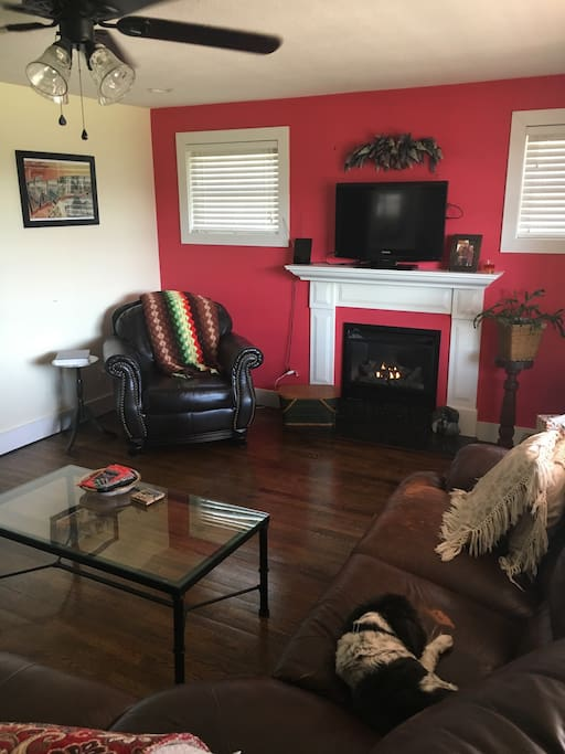 Relax in front of the fireplace.  DVD player and local channels available.