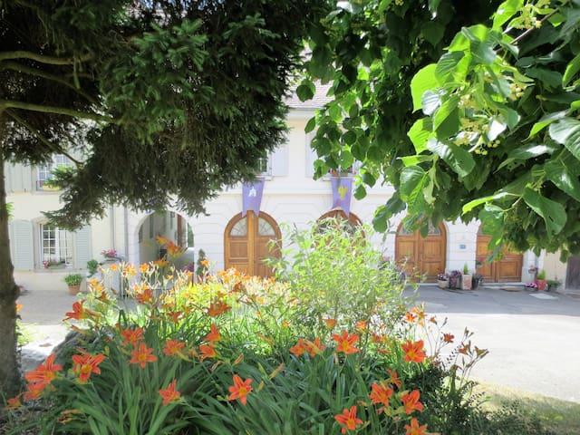 Gîte « Sud Alsace »***** (4-6) luxe et nature