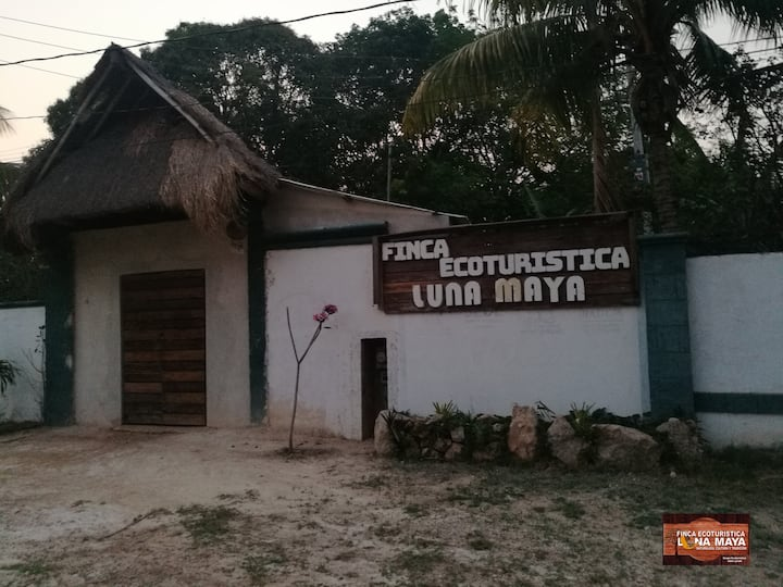 Vive la experiencia de la Zona Maya y su cultura.