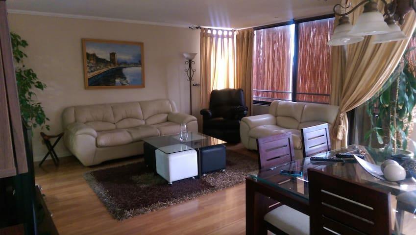 Quiet apartment in Providencia - Providencia - Appartement