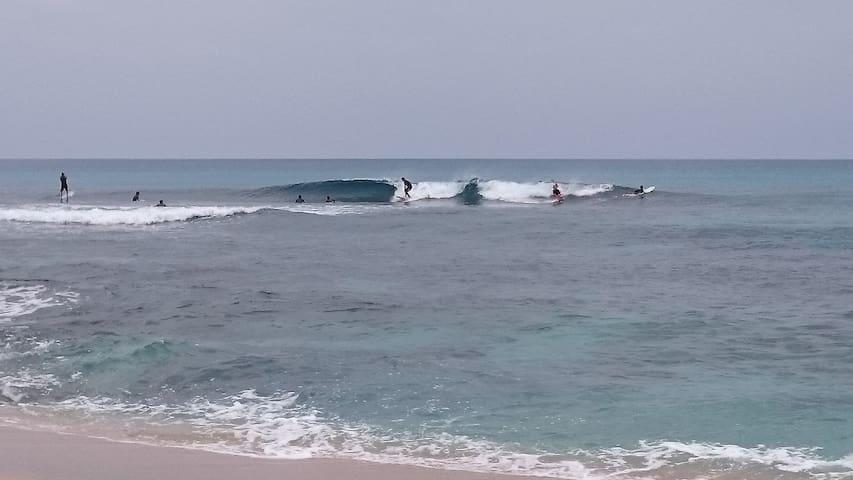 tebiro beach backpackers