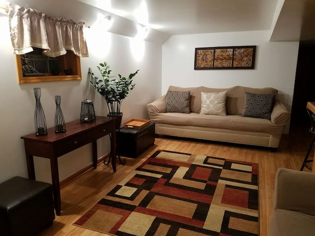 PRIVATE BEDROOM, KITCHEN, BATH & LIVINGROOM SPACE! - Chicago - Dům