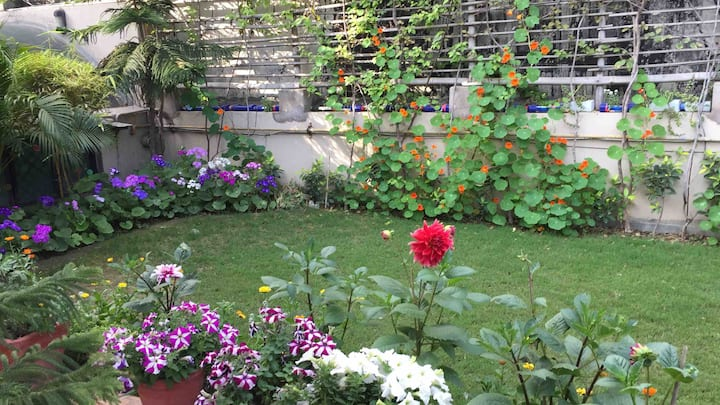 Sanitized per CDC guidelines, 1 BHK & terrace lawn
