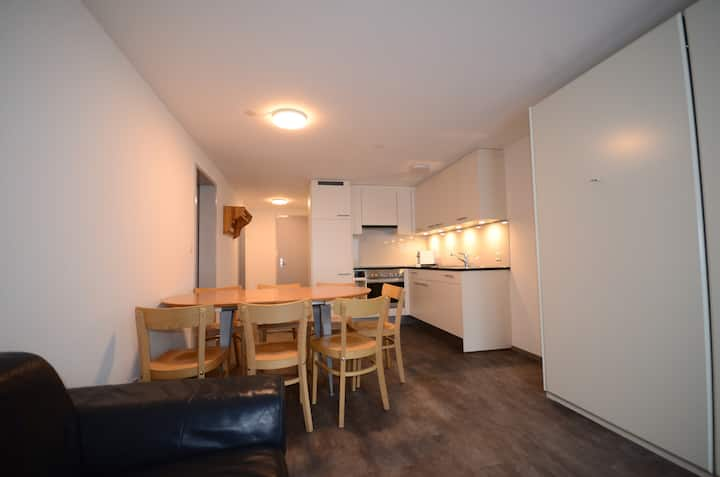 3room apartement in the 3 of Davos