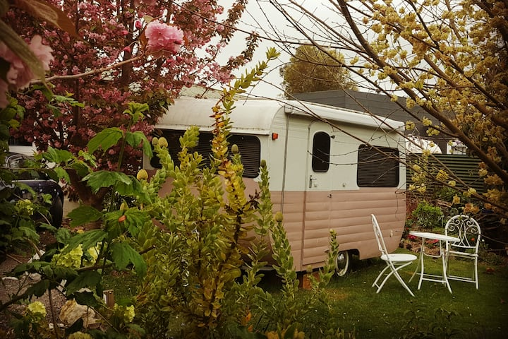 Sweet Treat Garden Caravan dragonflycottagebnb