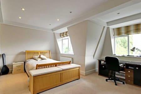 luxurious big house - Barnet