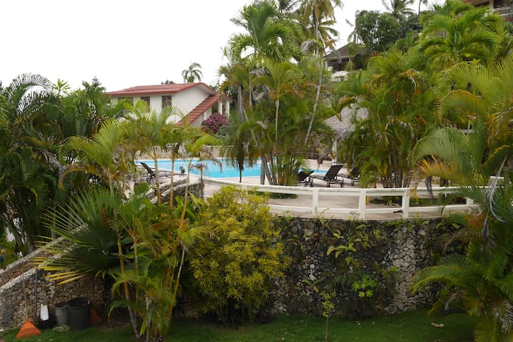 Condo 1 bdr/1 ba in La Catalina #1