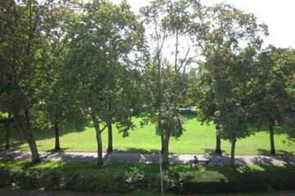 Park gegenüber Haus