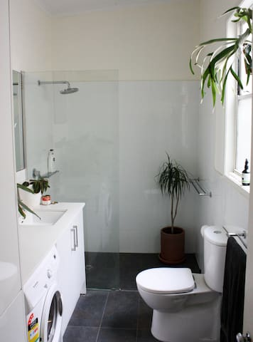 Shared bathroom/ toilet with washing machine