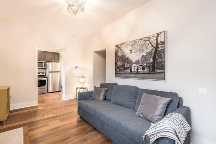 Modern Luxury One Bedroom Apartment