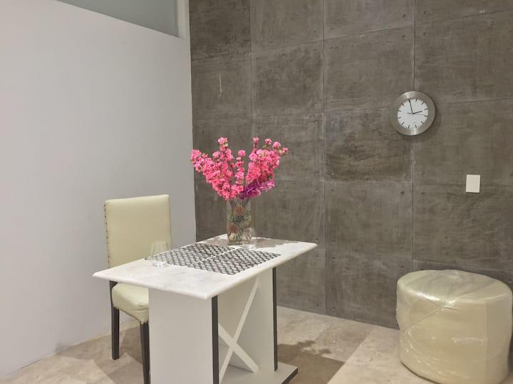 NEW Luxury ONE Bedroom LOFT 2 near Angelopolis (2)