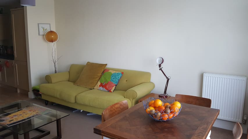 Beautiful apartment near to the city center - Peterborough - Wohnung