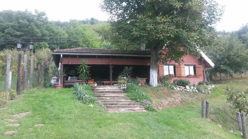 Goldberg kuća za odmor - Beli Manastir - Casa