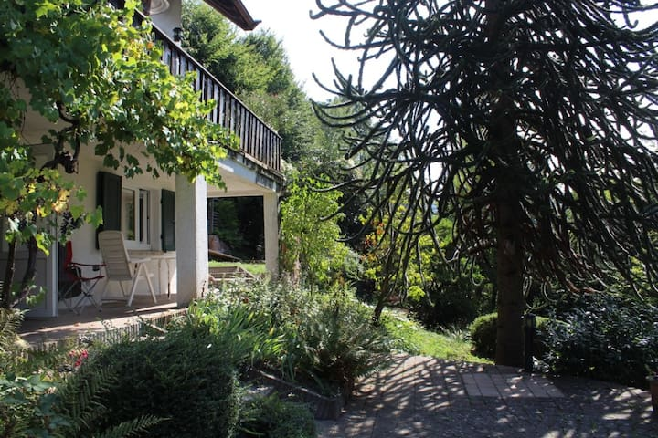 Paradise for nature lovers in Heidelberg