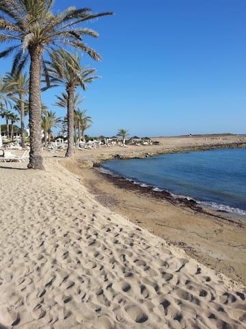 Beach at Paphos