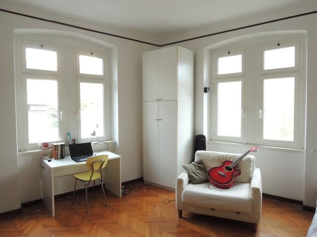 Spacious bright room with guitars - Trieste