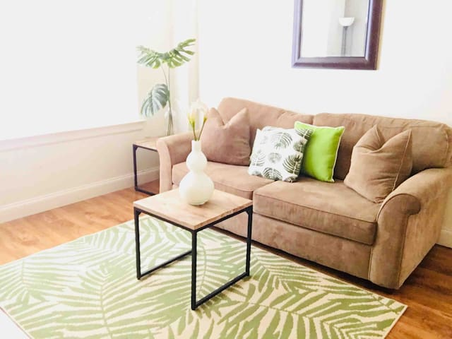 Tropical Memphis 2 Bedroom Apartment—Downtown!