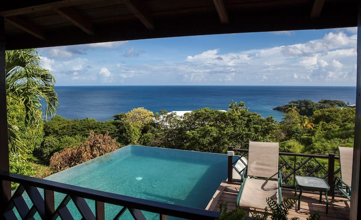 Private Infinity Pool Overlooking the Ocean | Luxury Villa