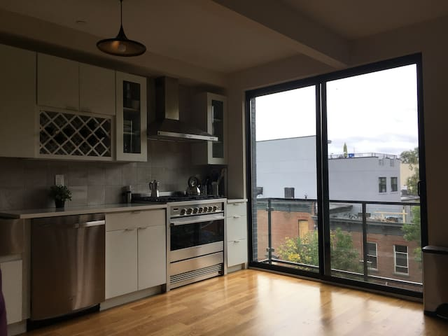 un tage entier avec un toit terrasse appartements en r sidence louer brooklyn new york. Black Bedroom Furniture Sets. Home Design Ideas