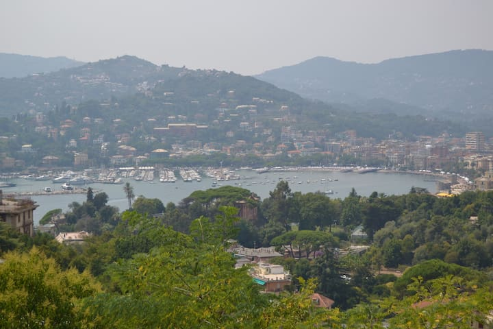 Seaview, peace and green! Amazing stay in Zoagli! - Rapallo - Appartement