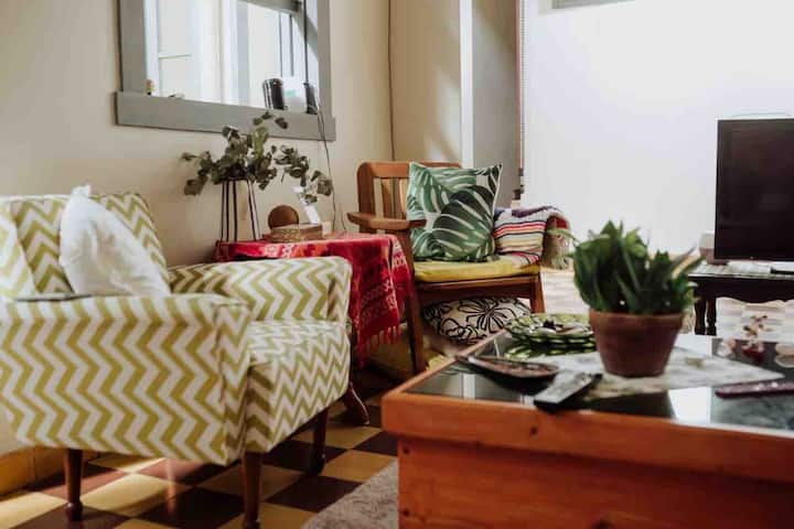 Colorful&Cozy NewlyRemodeled SanJoséHome (full bd)