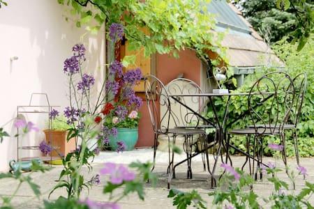 Gîte L'Alchémille - Rorschwihr